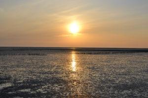 Sonnenuntergang in Hedwigenkoog